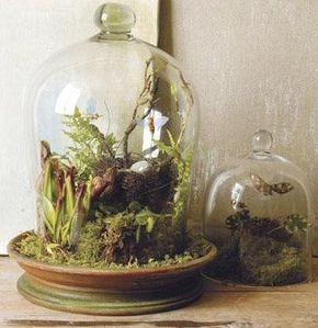 www.bridalweddingdresses.neti-heart-terrariums.html.jpg