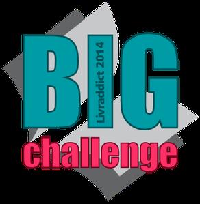 big-challenge-2014
