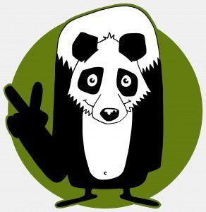 recherche futurs animateurs - animatrices 20091115164856_panda