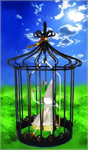 grande-cage-noire-sur-fond-de-nature.jpg