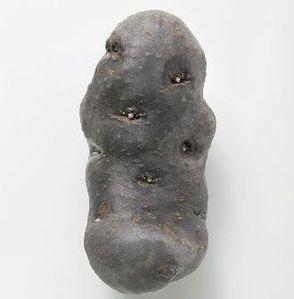 PatatesVitelotte