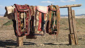 Desert de Gobi (9900)