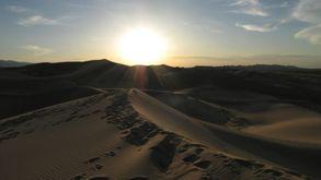 Desert de Gobi (194)