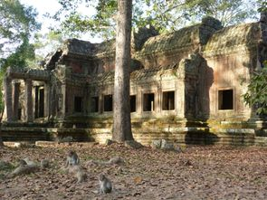 Temple d'Angkor (39)