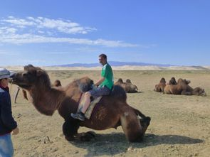 Desert de Gobi (205)
