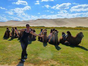 Desert de Gobi (216)