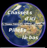 Chasses-pilles.jpg