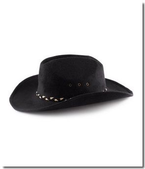 Chapeau de cow-boy : 12,95 &#x20AC;