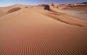 Desert-Express-le-desert-namibien-BlogOuvert.jpg