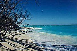 ile-Grande-Glorieuse3-plage.jpg