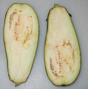 Eggplant-sliced_medium.jpg