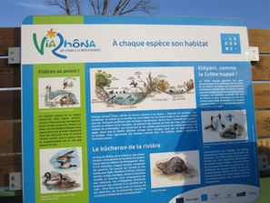 2011-10-octobre 2949-viarhona-especes