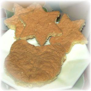 Biscuit buche 2