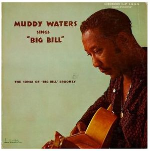 Muddy Waters 2