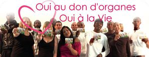 oui_home_clip-copie-1.jpg