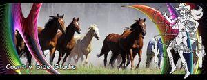 Photo-de-chevaux-9.jpg