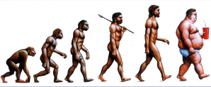 Evolution-of-Obesity-copie.png