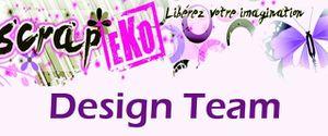 Banniere Design Team copie