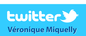LogoTwitterVM