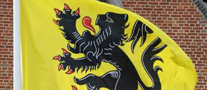 drapeau-flamand-belgique-wallons-flamands-10745679eceff_171.jpg