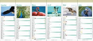 Calendrier_2013_12_pages_-_Oiseaux.jpg