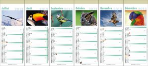 Calendrier_2013_12_pages_-_Oiseaux2.jpg