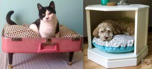 couchettes-chiens-chats.jpg