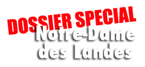 special-NNDDL-logo.png