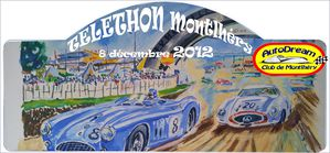 plaque-rallye-Telethon-2012-copie.jpg