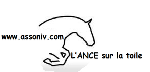 Grand-logo-ANCE-INTERNET-copie-3.png