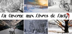 La-caverne-aux-livres-de-Laety.png
