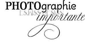 PHOTOGRAPHIE IMPORTANTE pm