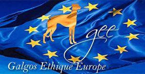 logo-bleu-galgos-ethique-europe-web4match-373