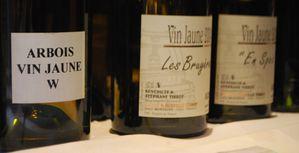Vins-2011-0181.JPG