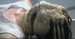 Alien_facehugger.jpg