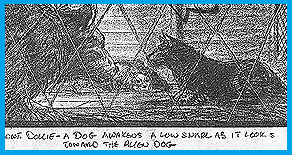 story-board-chien000.png