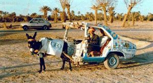 Humour---Rallye_Du_Maroc.jpg