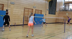 Showtraining 09 Badminton Brid Stepper 3