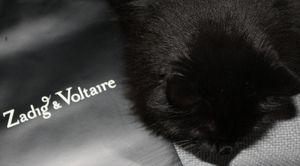 Zadig-et-Voltaire--et-moi 8735