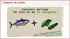 chaudronette-concours.JPG