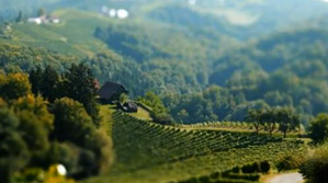 tiltshift5-copie-1.png