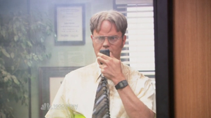 the-office-dwight-schrute.png