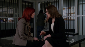 the-good-wife-carrie-preston-julianna-margulies.png