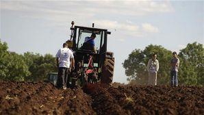 concours labours Jura 2011