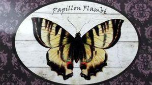 Papillon-9-septembre-2013-001.JPG