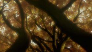 SamuraiChamploo-14-MisguidedMiscreants,Part2(anime-mx)[B412