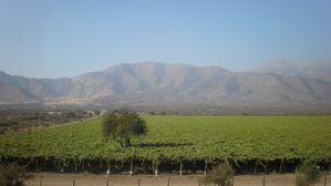 Cordillera chilena 2