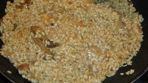 Risotto-royal-aux-cepes-on-ajoute-le-bouillon--500-.jpg