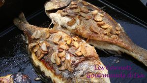 A la plancha thon mi cuit sesame wasabi gingembre les - Accompagnement sardines grillees barbecue ...