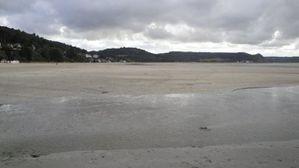 algues vertes Saint-Michel-en-Grève, la plage (4)